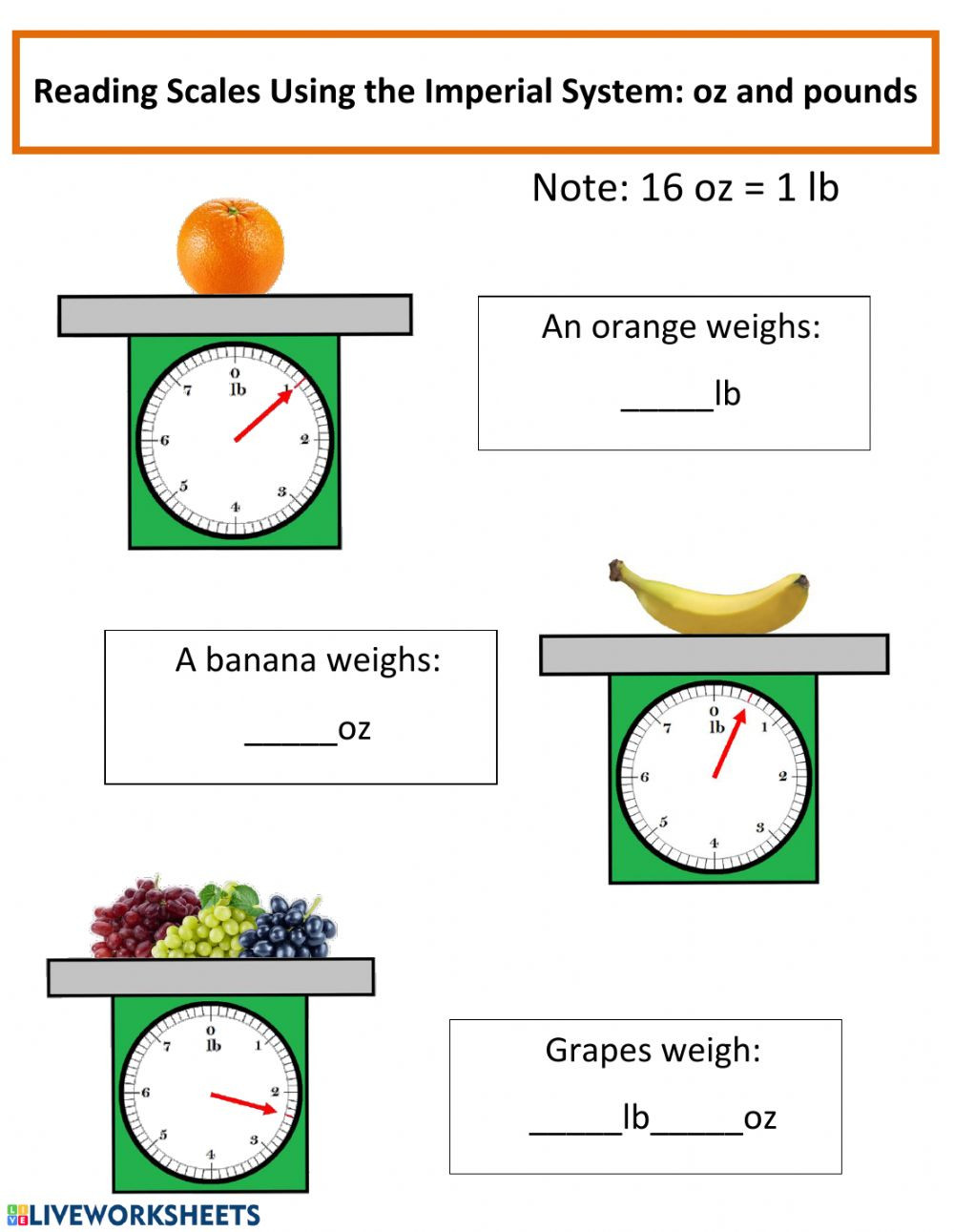 Reading A Scale Worksheet